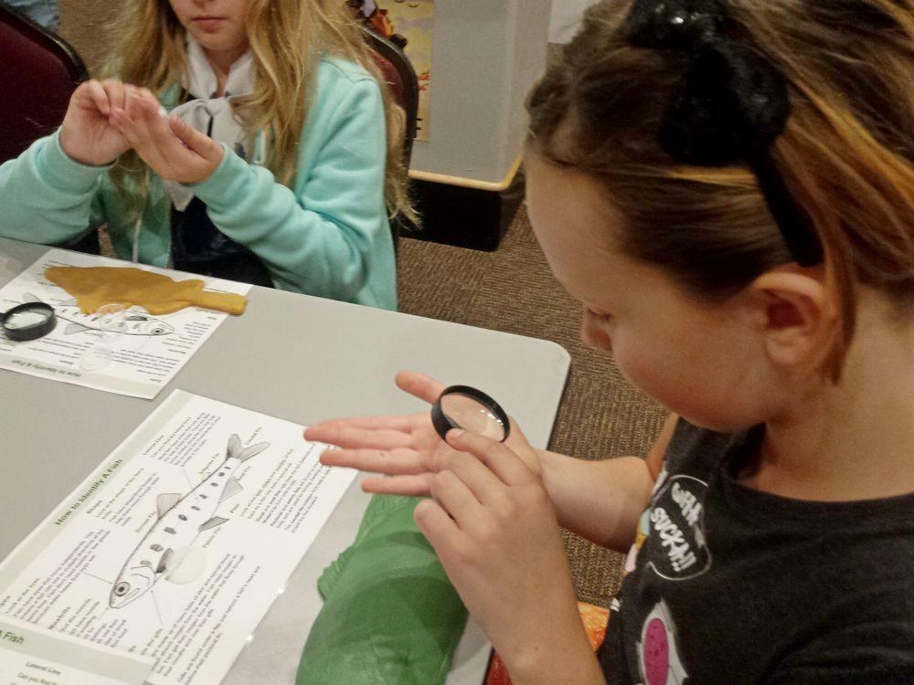 Having an Impact – Children using magnifying glasses